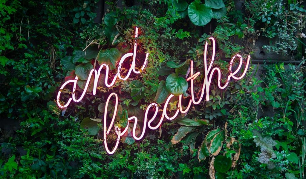 "Neon sign on leafy background reading: ""and breathe"""