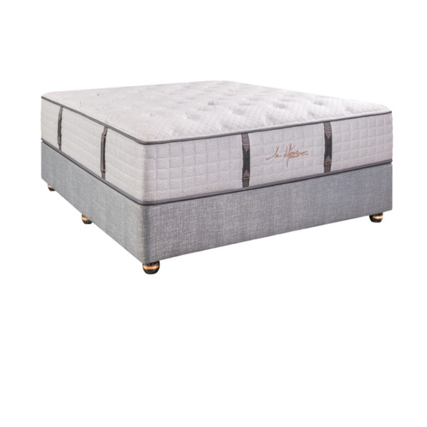 Sealy La Difference Nicci - Queen XL Bed
