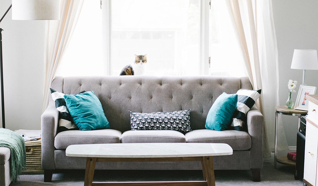 Grey couch with two blue scatter cushions on it in front of a window
